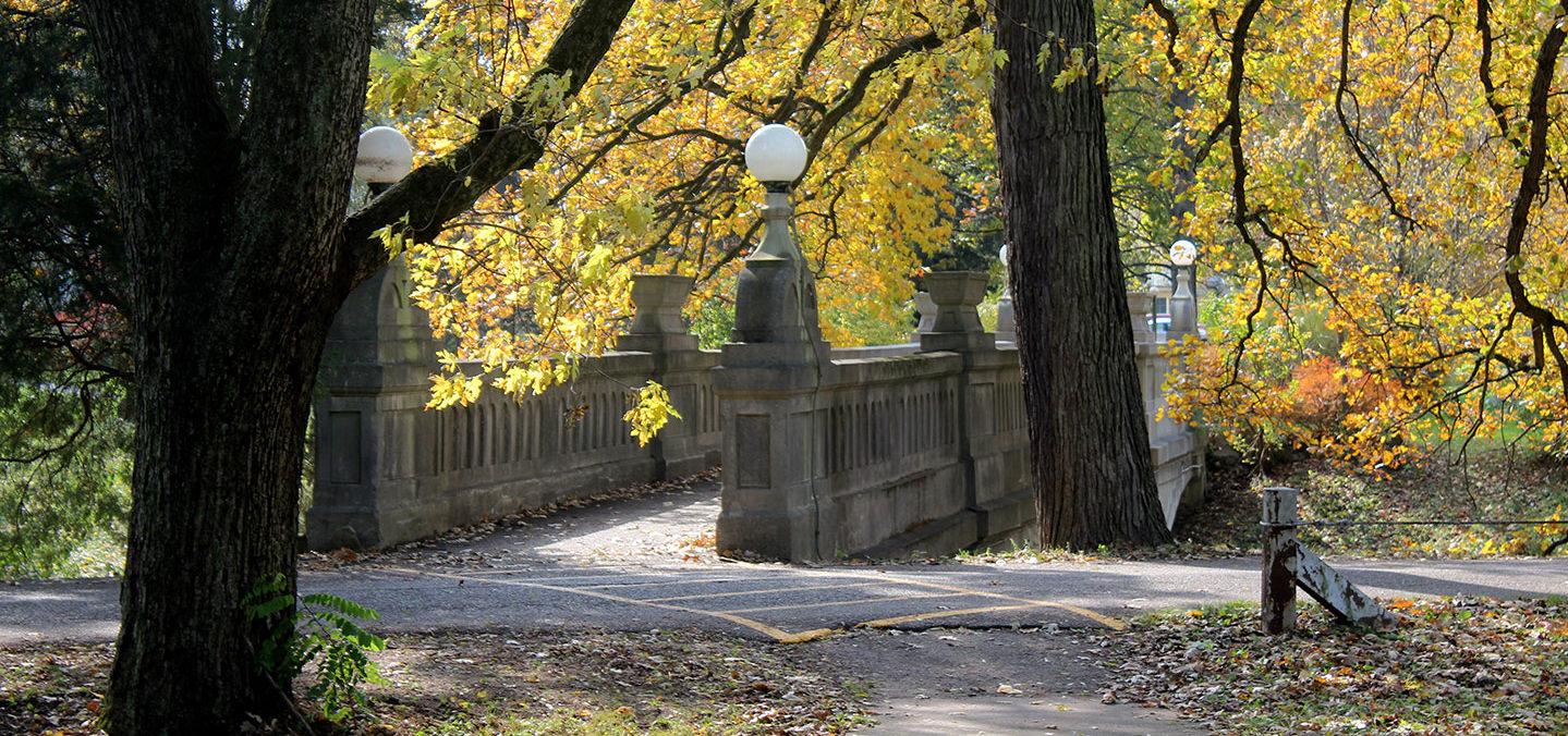 The Grotto Bridge in fall