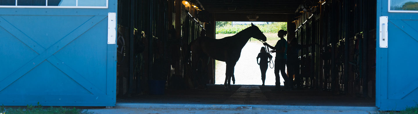 Front door of the barn with silhouette of a horse and a student