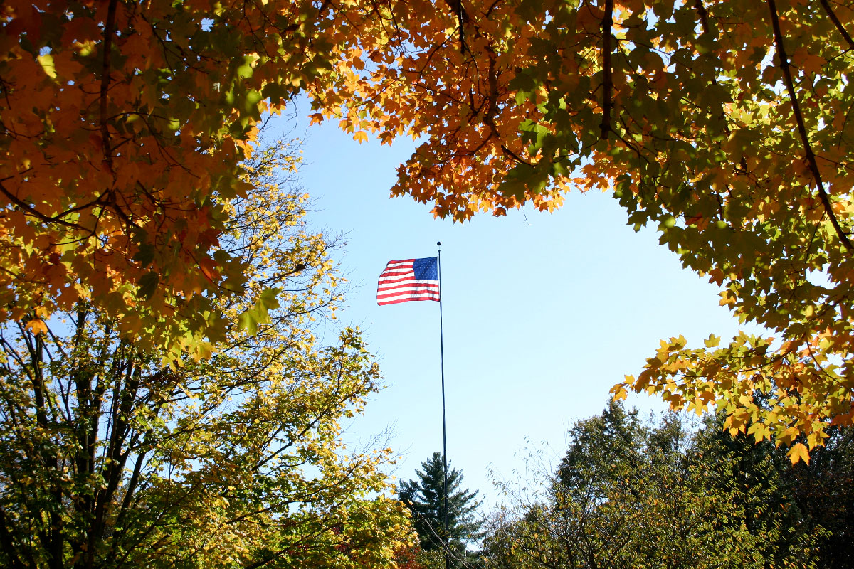View of flag surrounded by fall trees