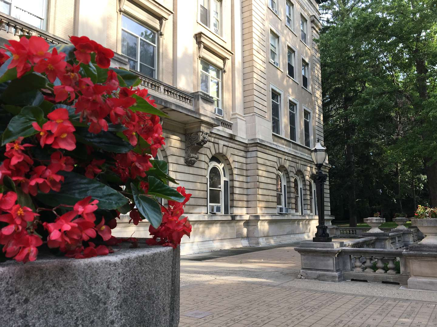 Red flowers in front of Guerin Hall