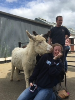 Student Katie Deitsh being approached by a weanling donkey at the Donkey Sanctuary in County Cork. Behind her is the manager of the facility which at the time of the SMWC visit, housed 1,500 donkeys.