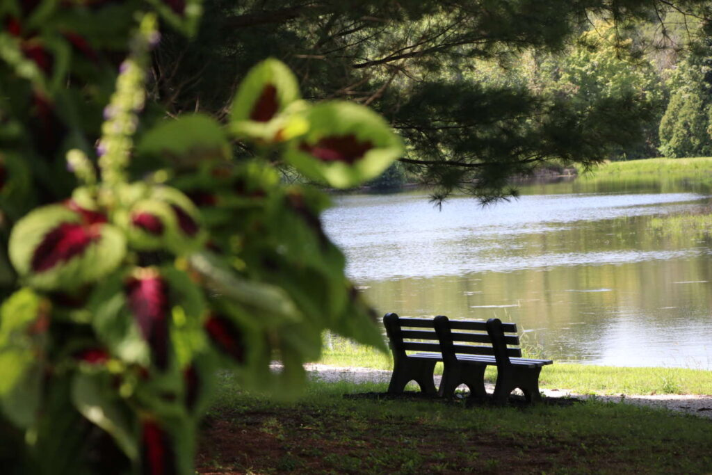 Serene photo of a bench overlooking Le Fer Lake.