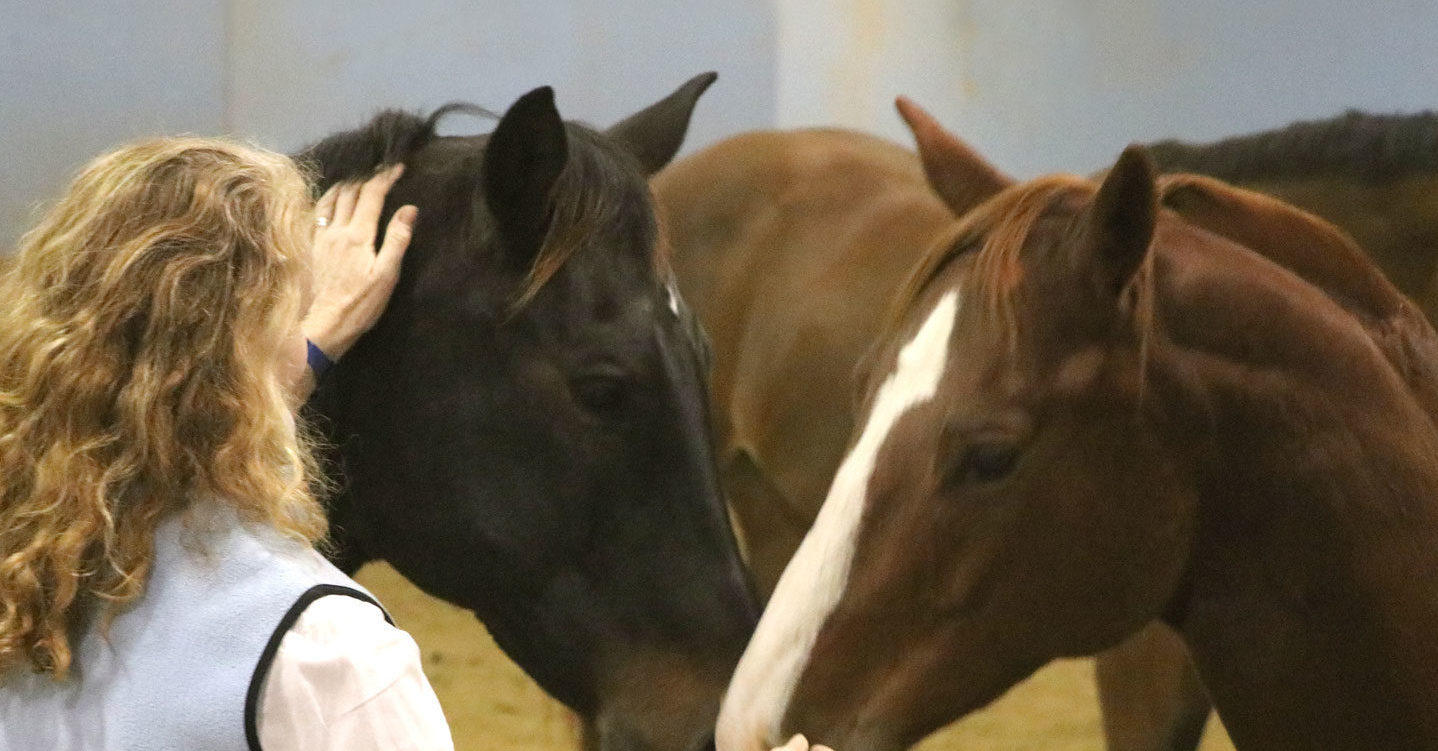 Christine Wilkey demonstrating Equine Therapy program