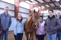 group of WVLI participants with a horse