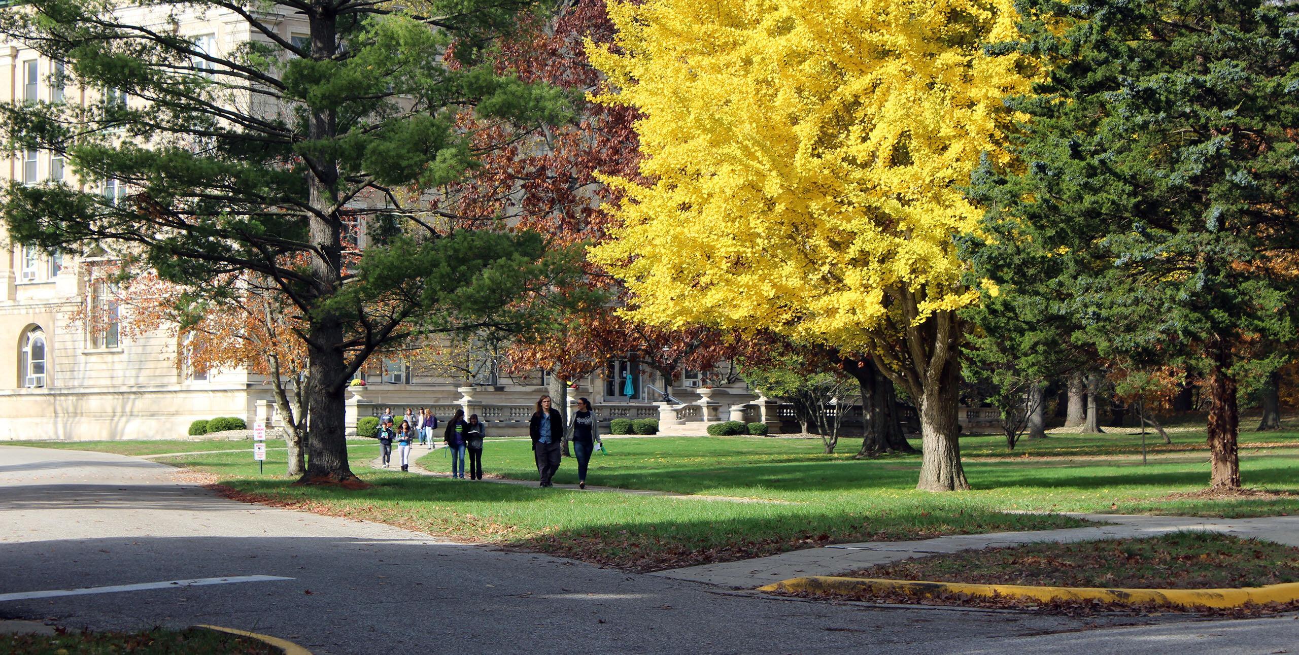 Students walking outside along sidewalk past fall colored trees