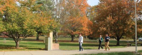 People walking to the library during the fall
