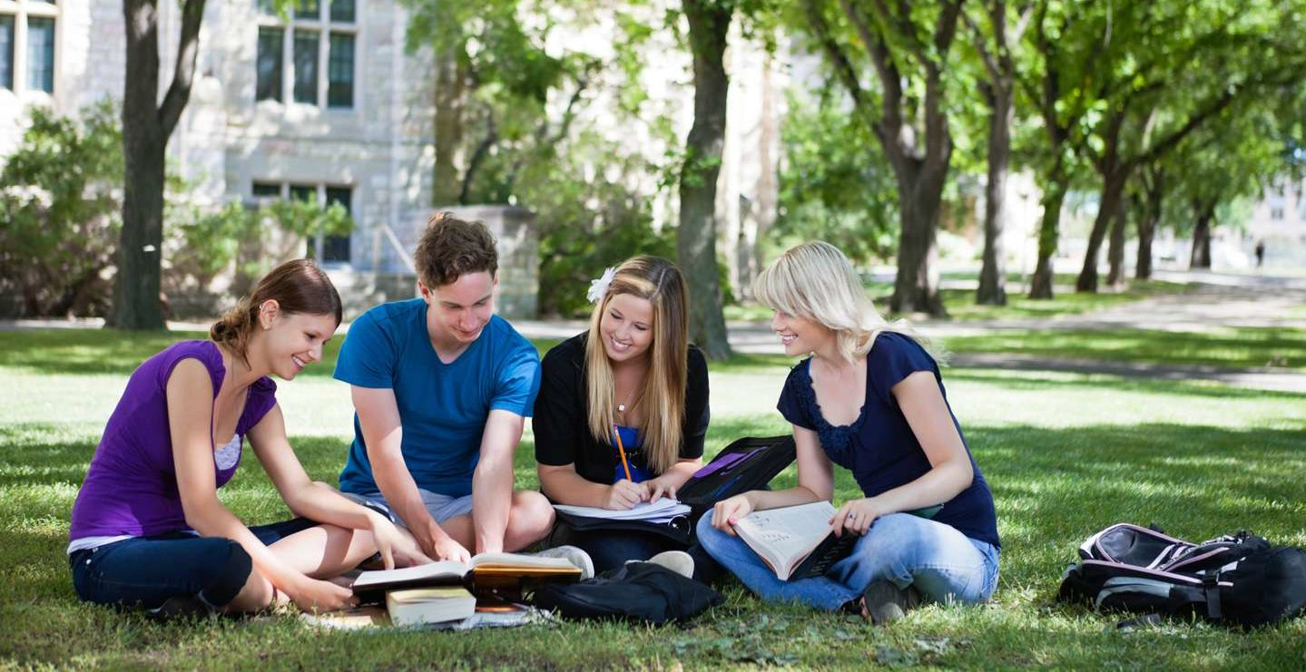 Three females and one male sitting in the grass studying together on a group project.