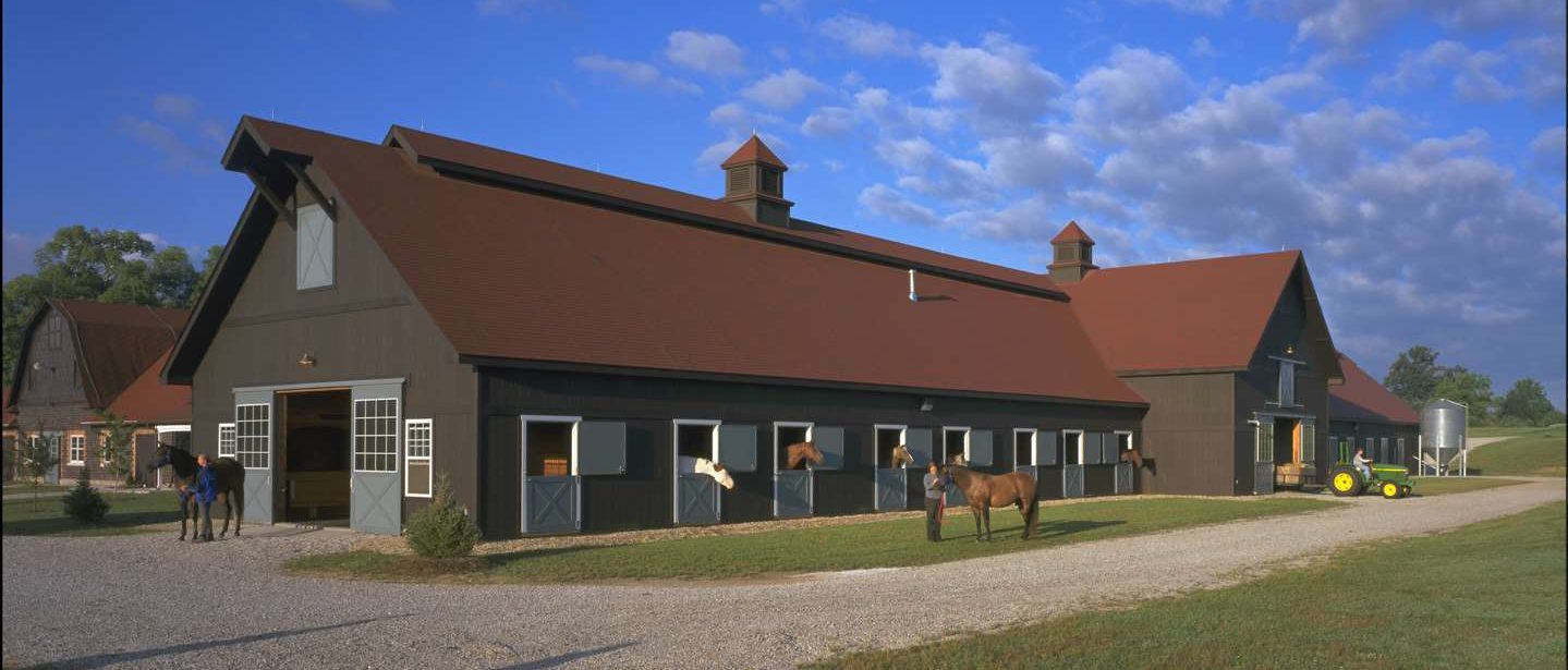 The equine facility with several horses heads out the stall windows and a blue sky.