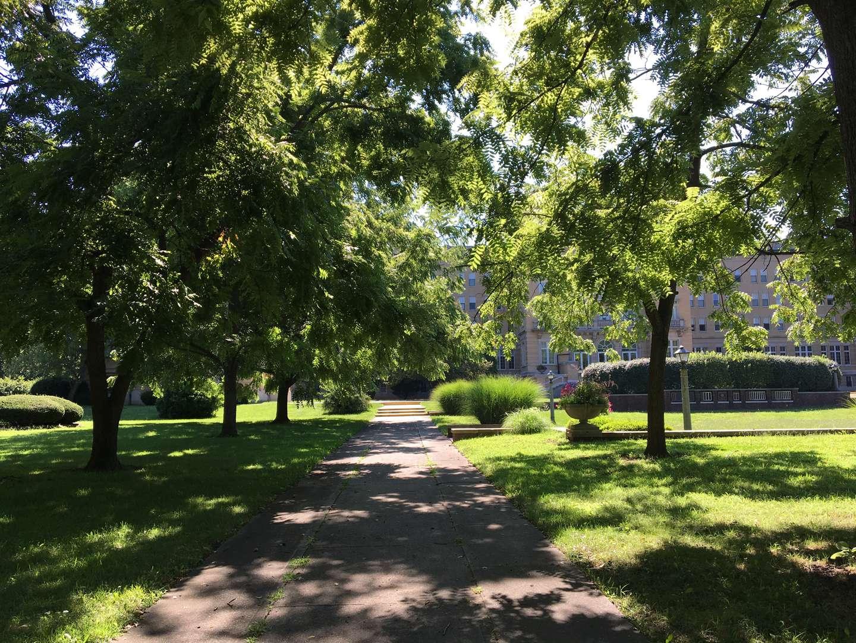 sidewalk leading to Le Fer Hall